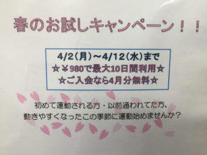 ☆☆春のお試しキャンペーン第2弾☆☆